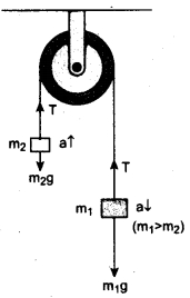 Tamil Nadu 11th Physics Model Question Paper 3 English Medium 13