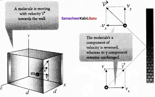 Tamil Nadu 11th Physics Model Question Paper 4 English Medium 10
