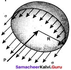 Tamil Nadu 11th Physics Model Question Paper 5 English Medium 10