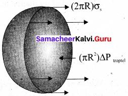 Tamil Nadu 11th Physics Model Question Paper 5 English Medium 16
