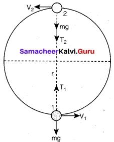 Tamil Nadu 11th Physics Model Question Paper 5 English Medium 18