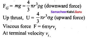 Tamil Nadu 11th Physics Previous Year Question Paper March 2019 English Medium Q 13