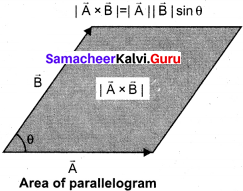 Samacheer Kalvi Guru 11th Physics Solutions Chapter 2 Kinematics