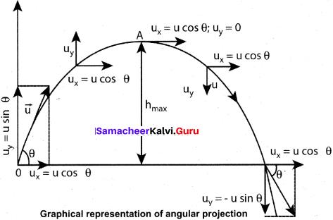 Samacheer Kalvi 11 Physics Solutions Chapter 2 Kinematics