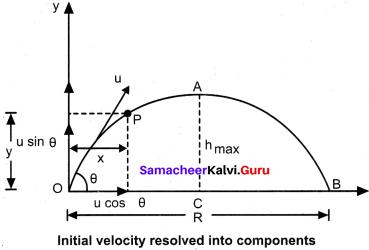 Samacheer Kalvi 11th Physics Book Back <br/>Answers Chapter 2 Kinematics