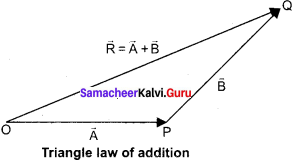 11th Physics 2nd Lesson Book Back <br/>Answers Samacheer Kalvi
