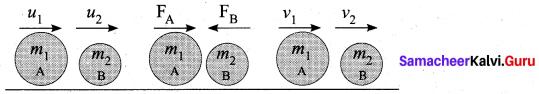 Samacheer Kalvi 10th Science Model Question Paper 1 English Medium image - 3