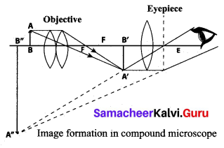 Samacheer Kalvi 10th Science Model Question Paper 2 English Medium image - 8