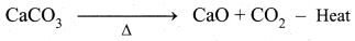 Samacheer Kalvi 10th Science Model Question Paper 4 English Medium image - 13