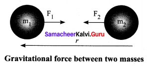 10th Science Unit 1 Samacheer Kalvi Laws Of Motion