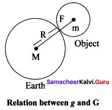 Laws Of Motion - Class 10 New Syllabus Samacheer Kalvi Chapter 1