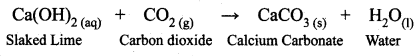 Samacheer Kalvi 10th Science Solutions Chapter 10 Types of Chemical Reactions 25