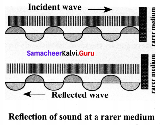 10th Science Solutions Samacheer Kalvi Chapter 5 Acoustics
