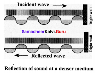 Guru Acoustics Samacheer Kalvi 10th Science Solutions Chapter 5