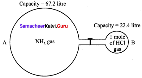 Atoms And Molecules Class 10 Questions And Answers Samacheer Kalvi Chapter 7