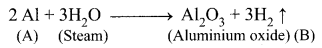 10th Maths Samacheer Kalvi Chapter 8 Periodic Classification Of Elements