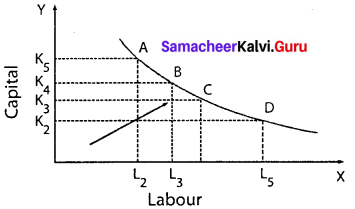 Economics Class 11 Samacheer Kalvi Solutions Chapter 3 Production Analysis