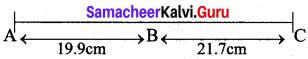 Samacheer Kalvi 12th Bio Botany Solutions Chapter 3 Chromosomal Basis of Inheritance img 6