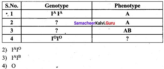 Samacheer Kalvi 12th Bio Zoology Solutions Chapter 4 Principles of Inheritance and Variation img 17
