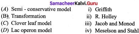 Samacheer Kalvi 12th Bio Zoology Solutions Chapter 5 Molecular Genetics img 3