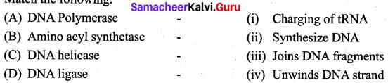 Samacheer Kalvi 12th Bio Zoology Solutions Chapter 5 Molecular Genetics img 4