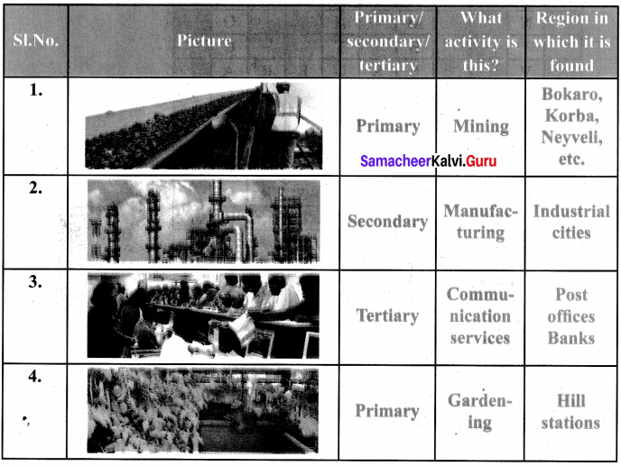 Samacheer Kalvi Guru 6th Social Science Term 2 Chapter 1 Resources