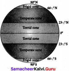 Samacheer Kalvi 6th Social Science Geography Solutions Term 3 Chapter 2 Globe image - 4