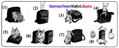 Samacheer Kalvi 7th English Solutions Term 3 Play Chapter 1 Jane Eyre img 11