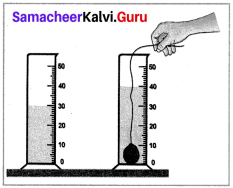 Samacheer Kalvi 7th Science Answers Term 1 Chapter 1 Measurement