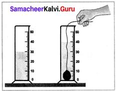 Class 7 Science Measurement Term 1 Chapter 1 Measurement Samacheer Kalvi