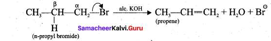Tamil Nadu 11th Chemistry Model Question Paper 1 English Medium image - 22