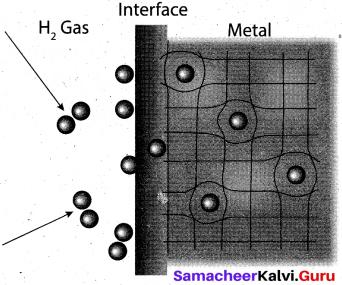Tamil Nadu 11th Chemistry Model Question Paper 2 English Medium image - 10