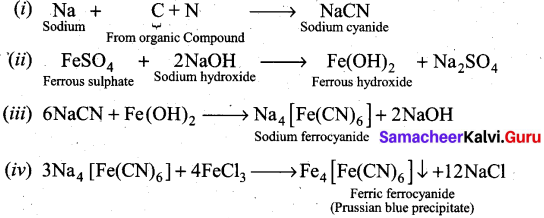 Tamil Nadu 11th Chemistry Previous Year Question Paper March 2019 English Medium 1