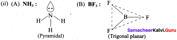 Tamil Nadu 11th Chemistry Previous Year Question Paper March 2019 English Medium 11