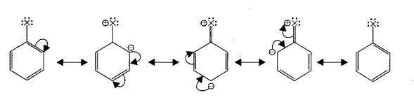 Samacheer Kalvi 11th Chemistry Notes Chapter 14 Haloalkanes and Haloarenes Notes 1