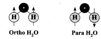 Samacheer Kalvi 11th Chemistry Notes Chapter 4 Hydrogen Notes 5