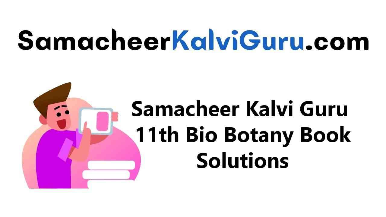 Samacheer Kalvi Guru 11th Bio Botany Guide Book Back Answers Solutions