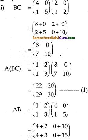Samacheer Kalvi 10th Maths Guide Chapter 3 இயற்கணிதம் Ex 3.19 9