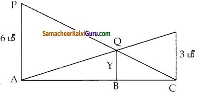 Samacheer Kalvi 10th Maths Guide Chapter 4 வடிவியல் Ex 4.1 14