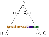 Samacheer Kalvi 10th Maths Guide Chapter 4 வடிவியல் Ex 4.1 19