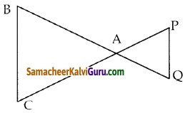Samacheer Kalvi 10th Maths Guide Chapter 4 வடிவியல் Ex 4.1 9