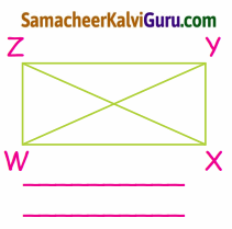 Samacheer Kalvi 4th Maths Guide Term 1 Chapter 1 வடிவியல் Ex 1.1a 11