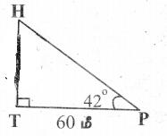 Samacheer Kalvi 9th Maths Guide Chapter 6 முக்கோணவியல் Ex 6.4 3