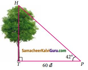 Samacheer Kalvi 9th Maths Guide Chapter 6 முக்கோணவியல் Ex 6.5 1