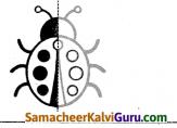 Samacheer Kalvi 4th Maths Guide Term 2 Chapter 1 வடிவியல் Intext Questions 8