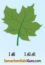 Samacheer Kalvi 4th Maths Guide Term 2 Chapter 4 அளவைகள் InText Questions 10