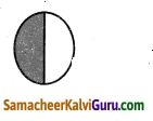 Samacheer Kalvi 4th Maths Guide Term 3 Chapter 6 பின்னங்கள் Ex 6.1 10