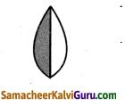 Samacheer Kalvi 4th Maths Guide Term 3 Chapter 6 பின்னங்கள் Ex 6.1 2