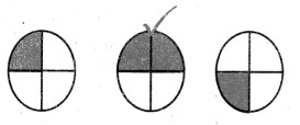 Samacheer Kalvi 4th Maths Guide Term 3 Chapter 6 பின்னங்கள் Ex 6.5 6