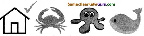 Samacheer Kalvi 5th Maths Guide Term 1 Chapter 1 வடிவியல் InText Questions 7